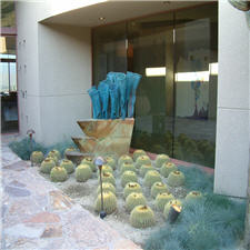 Barrel Cactus and Sculpture